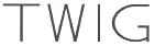 TWIG(6.0)extention Type【ミズタニ(MIZUTANI・水谷)】6.0インチ・オフセットハンドル