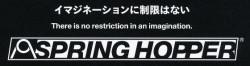 SPRING HOPPER TITANIUM Swivel-Ring(6.0)【ミズタニ(MIZUTANI・水谷)】6.0インチ・オフセットハンドル